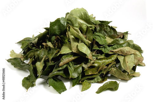 Canvas-taulu Dried Curry Leaves on white Background Isolated