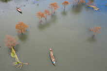 Aerial View Of A Person Sailing With A Canoe In Keraniganj Countryside, A Large Area Flooded By Monsoon Rains In Dhaka Province, Bangladesh.