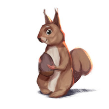 Squirrel And Nut 2d Art