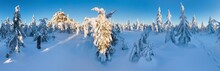 Panoramic Landscape Of Jizera Mountains, View From Peak Izera With Frosty Spruce Forest, Trees And Hills. Winter Time Near Ski Resort, Blue Sky Background. Liberec, Czech Republic, Northern Bohemia