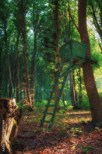 A hunter high chair in the middle of the forest while the sun sets