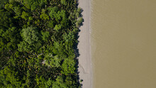 Aerial Top Down View Of Riverbank Forest