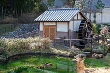 水車小屋 稲城市|上谷戸(かさやと)親水公園の水車小屋の池コケの緑の上に浮かび上がったように見えます