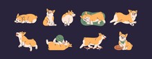 Set Of Cute Little Corgis Playing, Lying, Sleeping And Running. Funny Active Dog Or Puppy. Front, Back And Side View Of Adorable Crazy Doggy. Colored Flat Vector Isolated Illustration Of Happy Pet