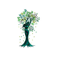 Dryad Tree Vector Illustrations, Human Tree, Woman Monsters.