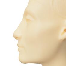 Bust Of Nefertiti Ivory Coloured Face Of Egyptian Lady Women Goddess