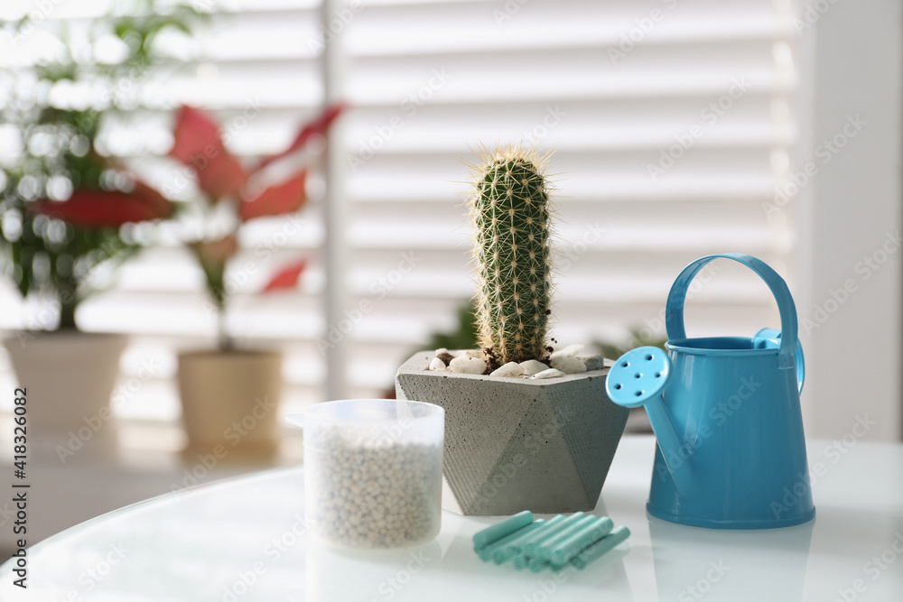 Fototapeta Beautiful tropical cactus plant in pot, watering can and fertilizers on table indoors, space for text. House decor