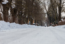 Low Angle Photo Of Snowy Street Surrounded Of Leafless Trees And Fences Of Houses During Grey Winter Day
