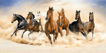 Seven Horse Running Wall Painting.