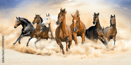 Foto Seven horse running wall painting.
