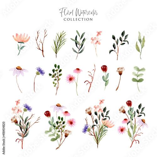 Stampa su Tela wild flower meadow watercolor collection