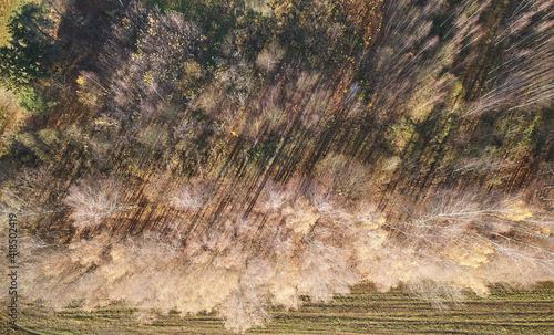 Autumn aerial landscape © PixieMe