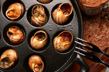 Snails In A Pan