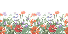 Vector Floral Seamless Border. Summer Flowers, Herbs, Leaves. Gaillardia, Marigold, Oxeye Daisy, Calendula,  Rosemary, Lavender, Sage, Allium. Orange, Red, Blue Flowers Isolated On A White Background.
