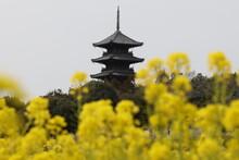 日本の岡山県総社市の五重塔