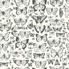 Hand Drawn Ink Line Art Butterfly Seamless Pattern