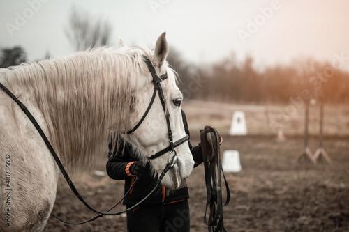 Slika na platnu White adorable horse with a horse rider