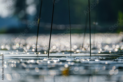 summer lake water surface abstract from low point of view Fototapeta