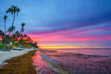Vibrant Sunset Over Tropical Beach And Palm Trees In Dominican Republic