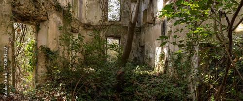 Fotografia, Obraz vue panoramique sur l'intérieur d'un bâtiment en ruine envahi par la végétation