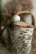 Quail Egg On A Birch Stump
