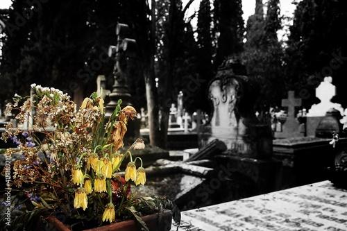 Flores muertas y cruces cristianas en las tumbas de un cementerio católico histórico en Madrid, España Fototapeta