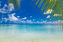 Tropical Beach Paradise As Summer Landscape. Coconut Palm Tree Leaves White Sand, Calm Sea For Serene Beach. Luxury Beach Scene Vacation Summer Holiday. Exotic Island Nature Travel Destination
