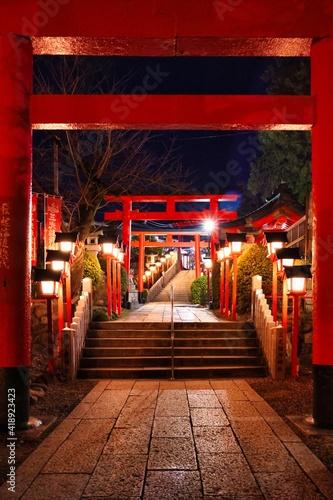 Obraz na plátně 愛知県犬山市 犬山城下町の三光稲荷神社 夜の鳥居のライトアップ