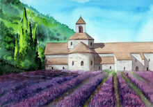 Watercolor Picture Of Purple Lavender Field With An Ancient Castle And With Some Cypress Trees And Green Hills On The Background