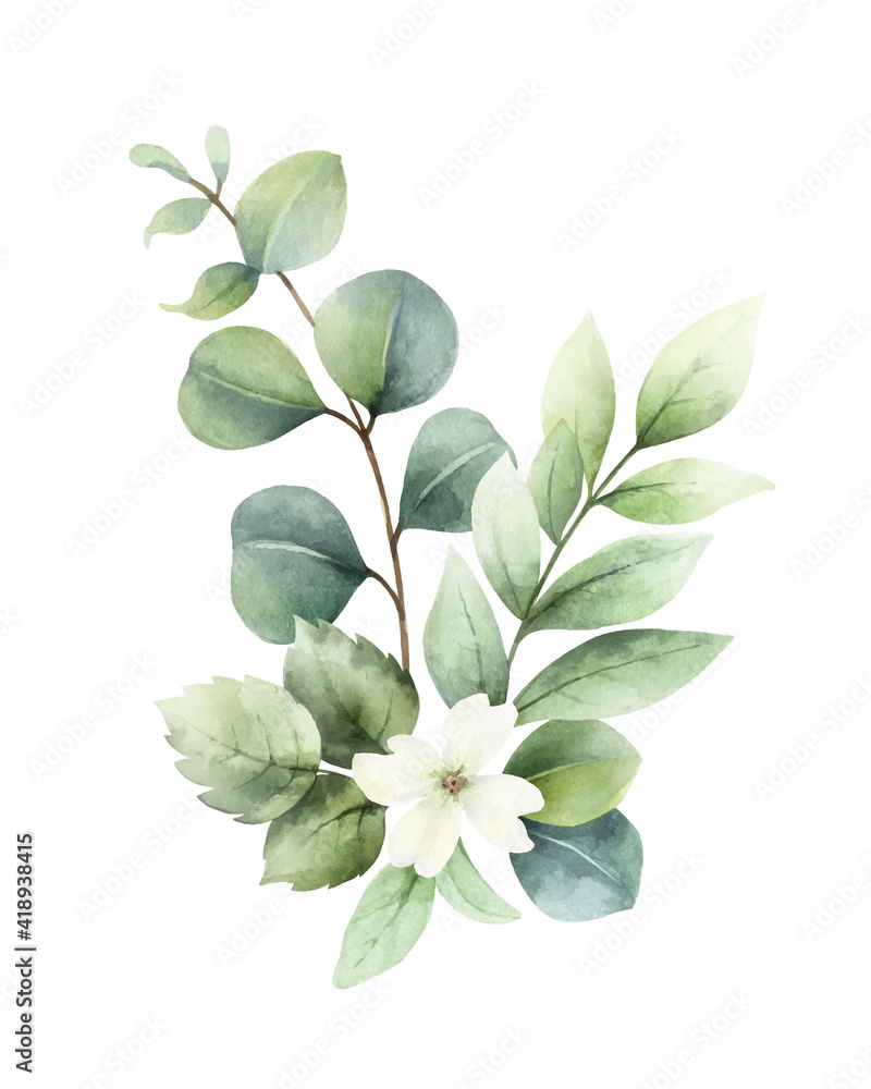 Fototapeta Watercolor vector hand painted bouquet with green eucalyptus leaves and flowers.
