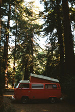 Camper In California's Forest. Shot On The 35mm Film.