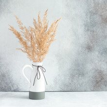 Pampas Grass In Ceramic Vase Against Wall. Still Life Bouquet Of Dried Flowers On Stone Background With Copy Space - Image