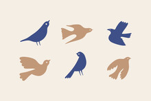 Vector Illustration In Simple Hand Drawn And Linocut Style - Natural Print, Poster Or Logo Design Template - Spring Illustration - Birds