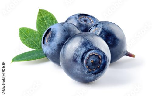 Blueberry Fototapeta