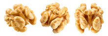 Walnut Half Isolate. Peeled Walnut On White. Walnut Nut Top View. Set With Clipping Path. Full Depth Of Field.