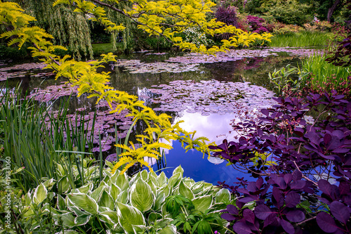 Fotografia Pond, trees, and waterlilies in a french garden