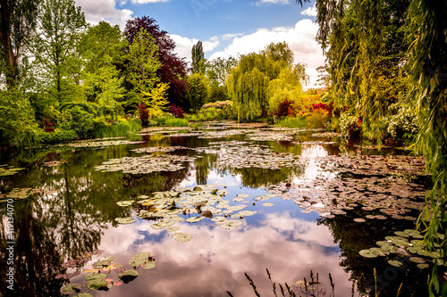 Fototapeta Pond, trees, and waterlilies in a french garden