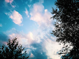 Fototapeta Na sufit - piękne niebo