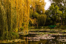 Meeting Claude Monet On His Water Lily Pond