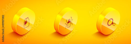 Foto Set Isometric Spider in jar, Stink bug and Magnifying glass icon