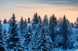 canvas print picture - beautiful winter sunrise in snowy Emmental