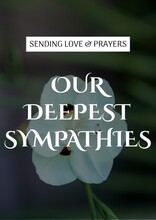 Sending Love And Prayers Our Deepest Sympathies Text With White Flower In Background
