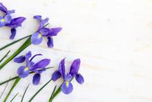 Iris Flowers On White Wood Background
