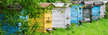 Yellow Blue Black And White Beehives In Village Garden