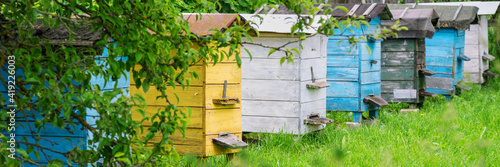 Canvastavla yellow blue black and white beehives in village garden