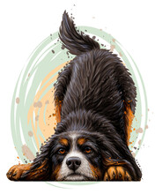 Playing Dog. Wall Sticker. Color,  Drawing Portrait Of A Bernese Mountain Dog Puppy In Watercolor Style On A White Background. Separate Layer. Digital Vector Drawing