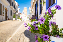 Flowers In A Street Of Altea