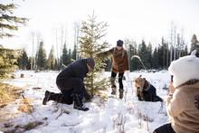 Girl Taking Photo Of Grandfather Chopping Down Christmas Tree