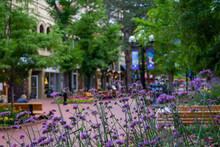 Pearl Street Mall_Boulder Colorado