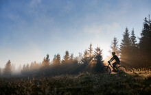 Silhouette Of Man In Cycling Suit Riding Bicycle In Forest Illuminated By Morning Sunlight. Male Bicyclist Cycling Down Grassy Hill In The Morning. Concept Of Sport, Bicycling And Active Leisure.